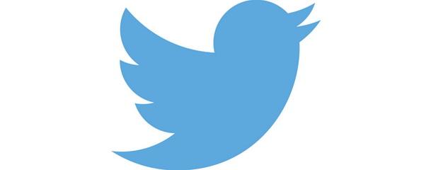 Детективы в Twitter