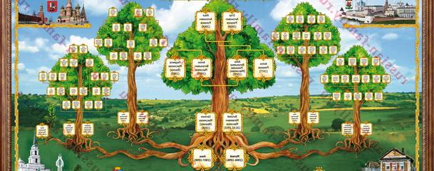 Cоставление генеалогического дерева